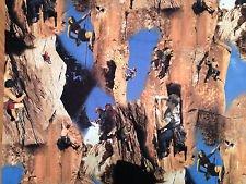 Rock Climbing Fabric