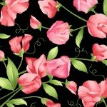 Maywood Sweet Pea Flannel MASF1821-J Large Pink Roses on Black `