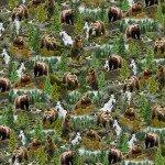 Timeless Treasures Nature CD7562-Multi Brown Bears '