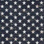 Timeless Treasures American Pride  C5568-NVY Navy Stars '