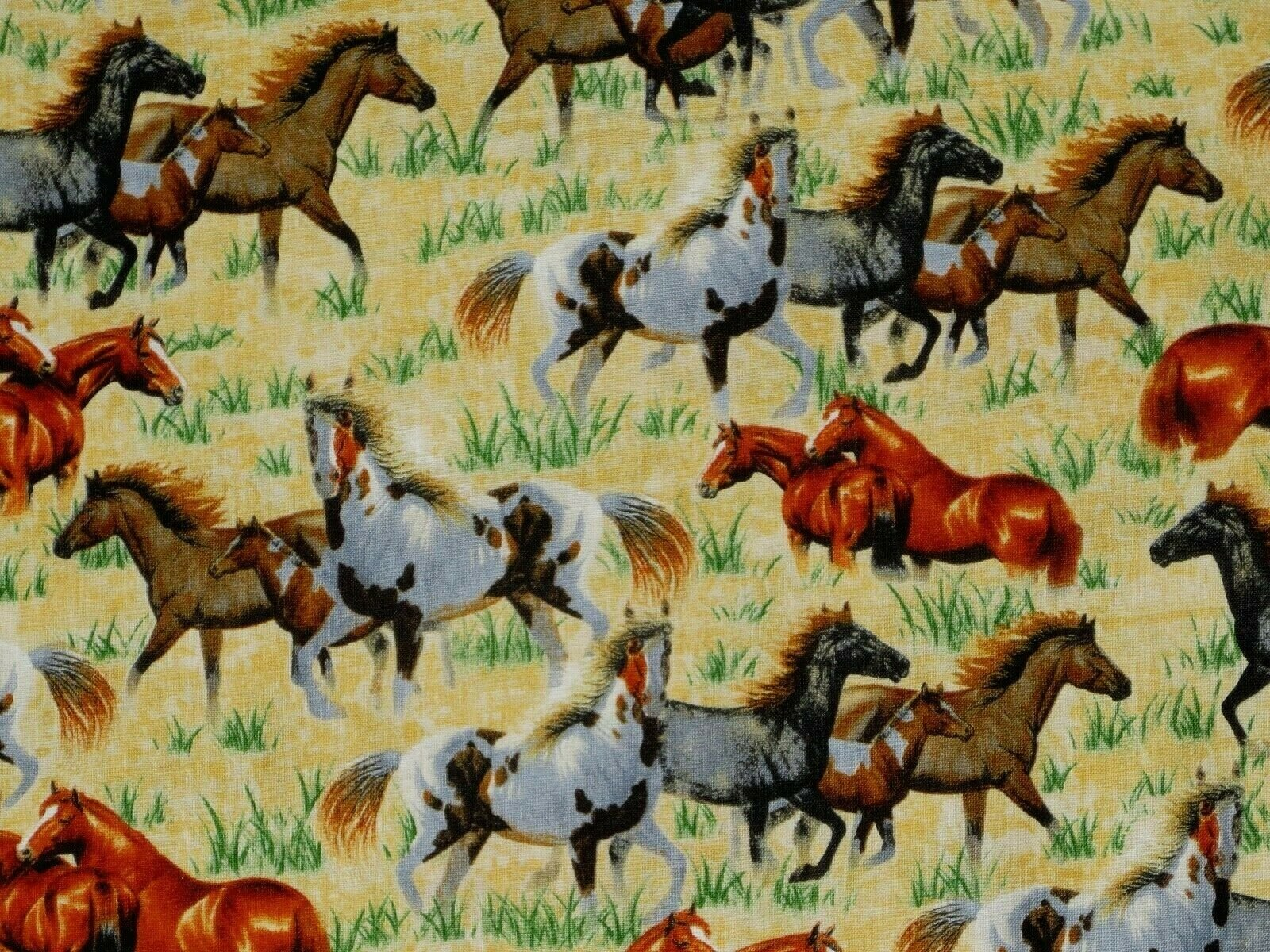 Round 'em Up Running Horses Chamois Quilting Treasures 26604 SOIS