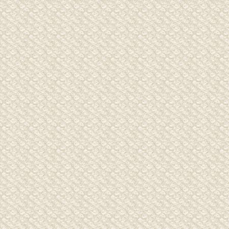 18505-E 45'' Maywood Studios Ecru Poodle Boucle Woolies Flannel
