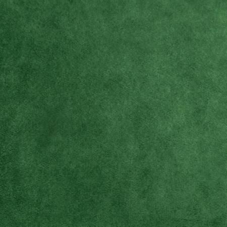 C3-EVERGREEN 60'' Shannon Evergreen Cuddle