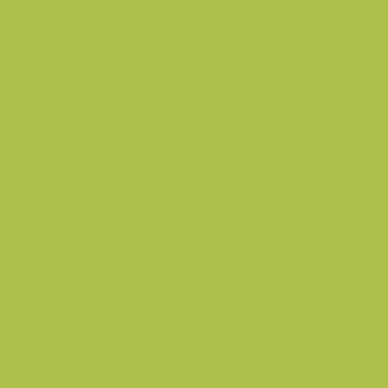 45'' Studio E Basic Flannel Solids Lime