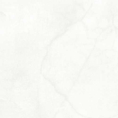 9195-01 108'' Blank Quilting White Urban Legend