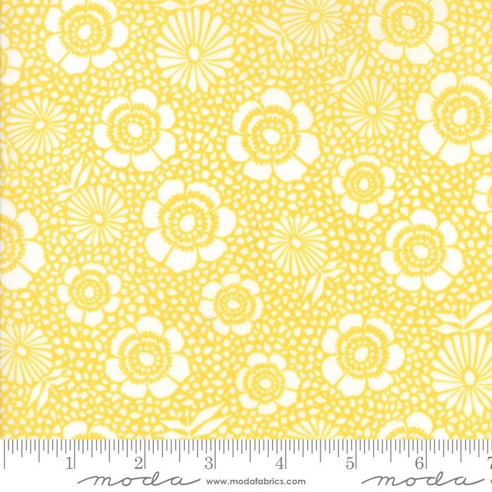 11142 13 108'' Moda Fabrics Harmony Sunshine Flowers Wide Backing