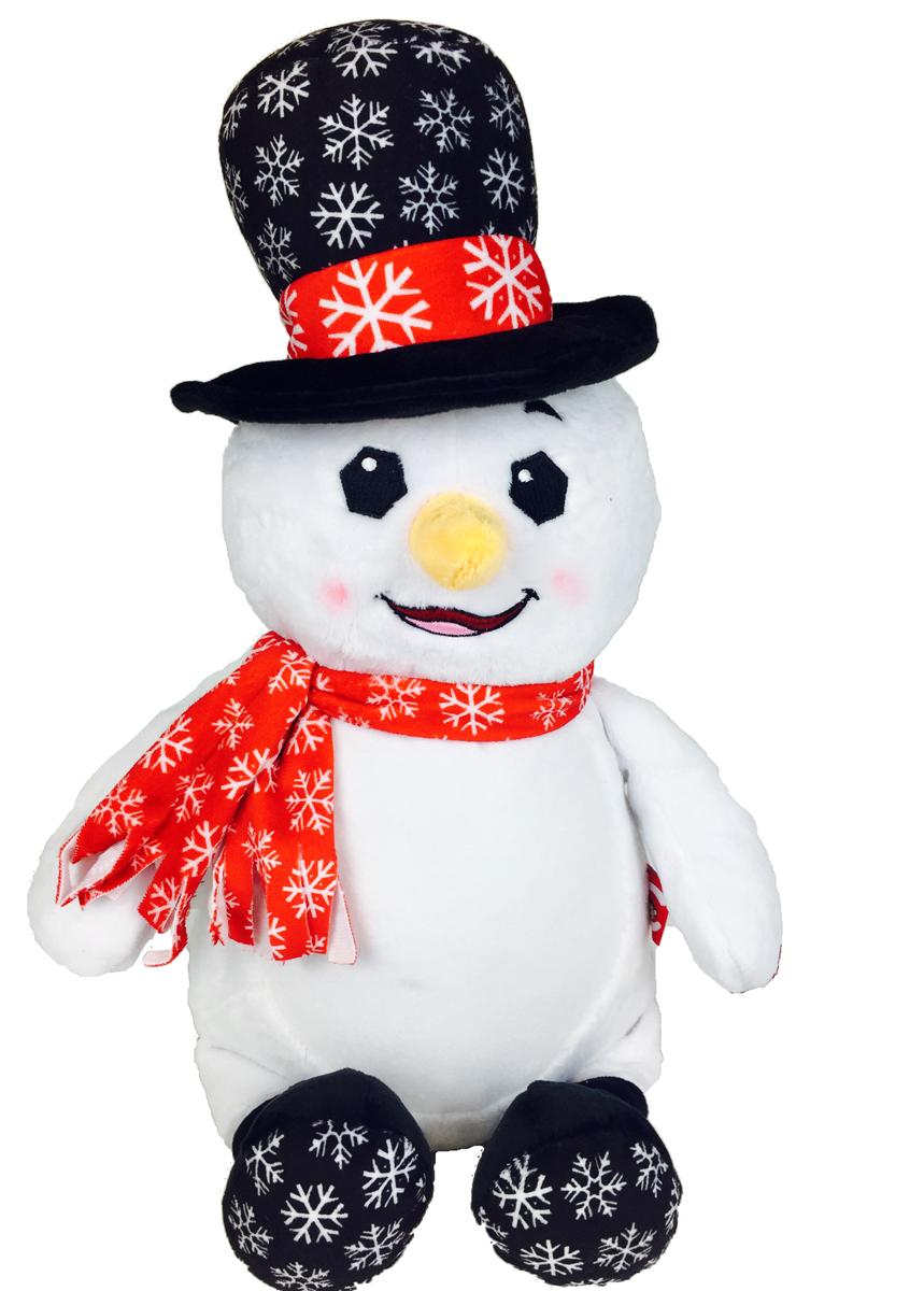 CUBBIES - DR. DIDDLINGTON THE SNOWMAN