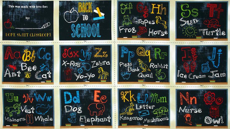 SCHOOL DAYS PANEL #55