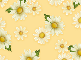 Daisy Garden Main Floral Yellow Yardage