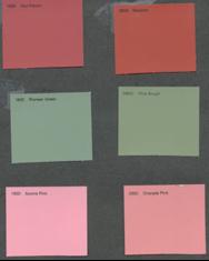 color comparison for warm and cool undertones