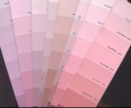 cool undertone pink color samples