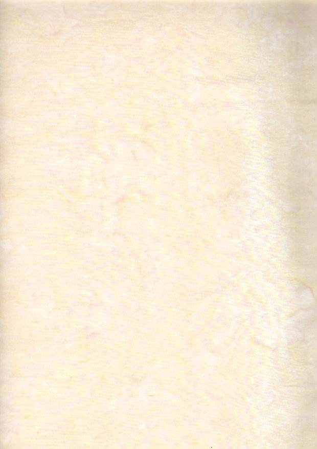 ABS 026 Ivory 3