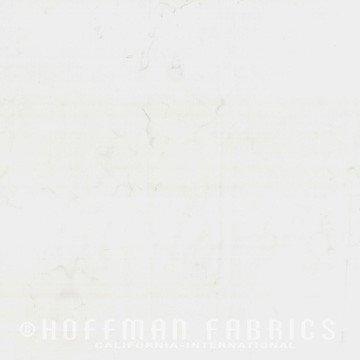 Hoffman 1895 307 Snow
