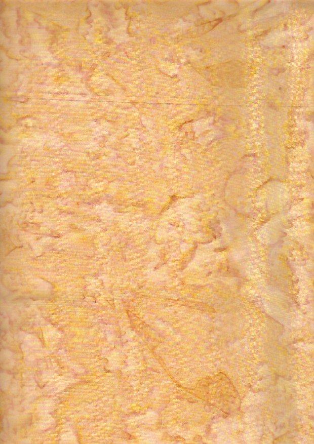 ABS 026 Maize