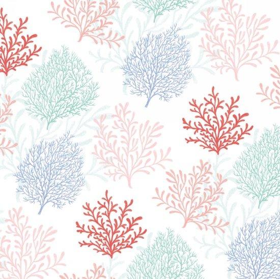 Mermaid Dreams Coral