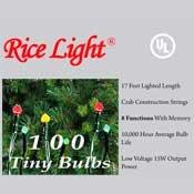 Multi colored rice lights