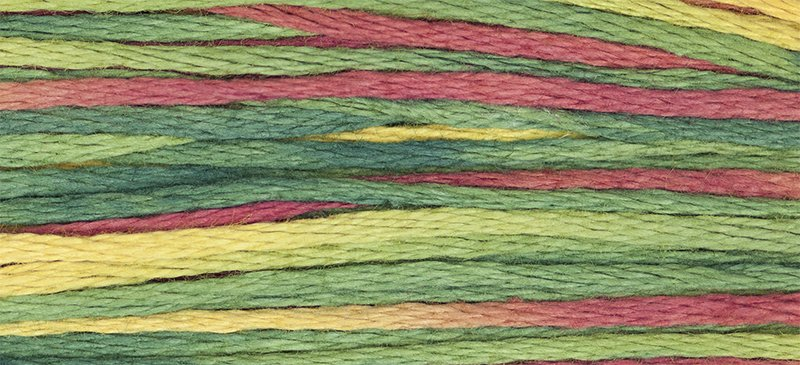 WDW Cotton Floss Noel 4105