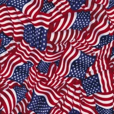 Fabri-Quilt Inc. American Pride Wavy Flag Brite