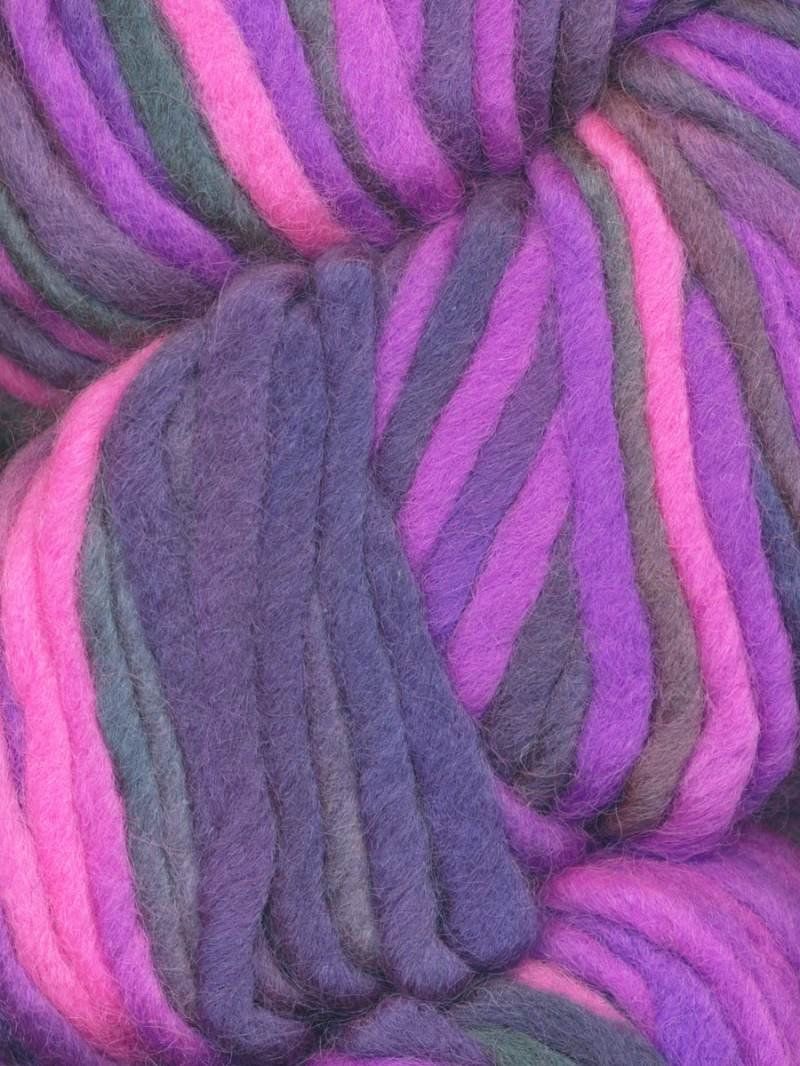 Knitting Fever AraucaniaTierra Del Fuego #107