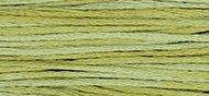 WDW Cotton Floss Scuppernong 2196