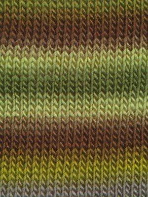 Knitting Fever Chunky Chromatic 2007