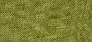 CS Fabric 30ct WDW Linen Grasshopper F8
