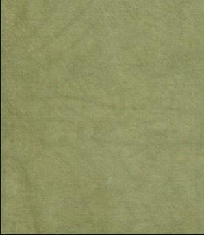 CS Fabric 18ct Aida Olive Green F8