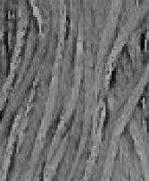 WDW Cotton Floss Glacial Melt 2112