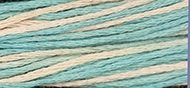 WDW Cotton Floss Bermuda 2121