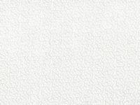 White on White Fern 42249-a01