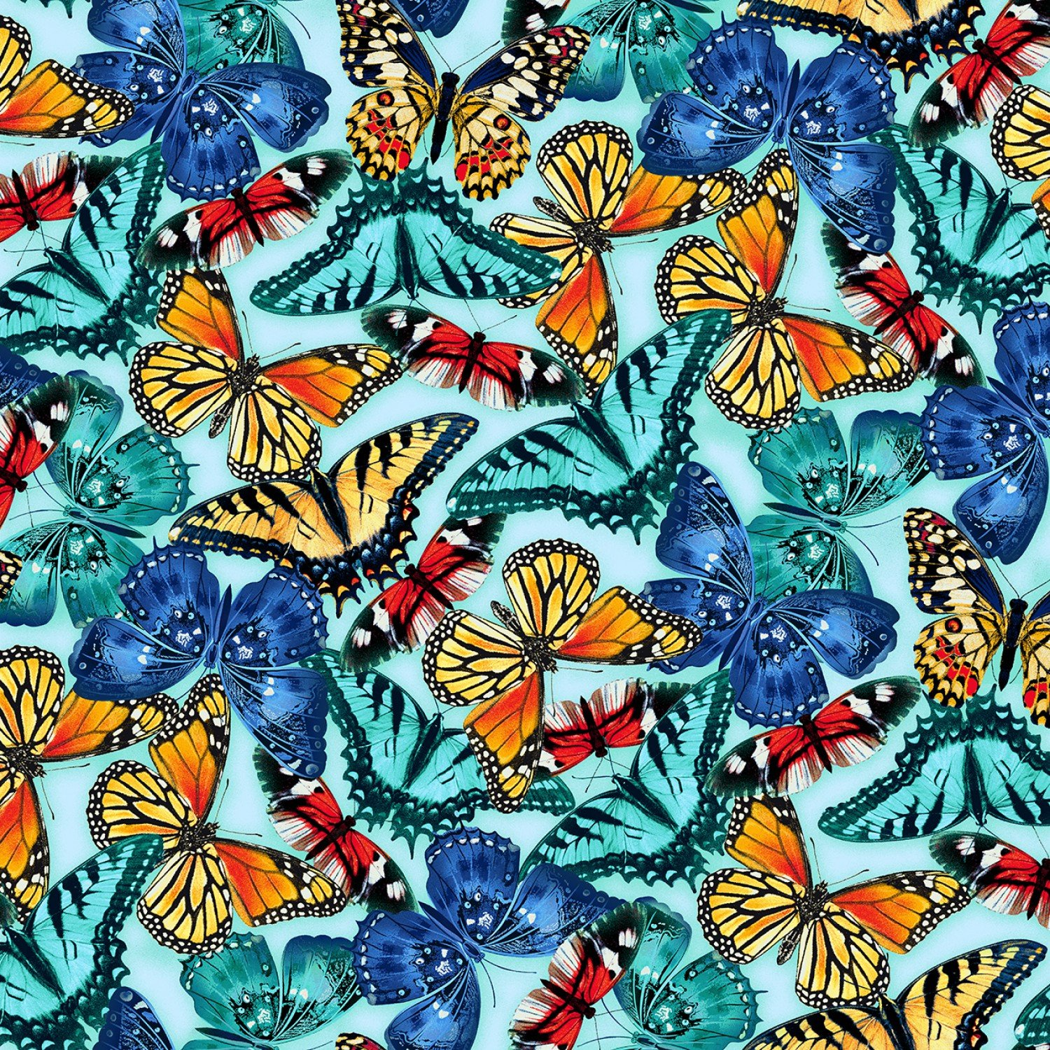 Butterfly Vortex, Large Blue