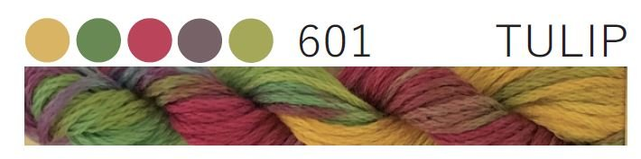 Cottage Garden Thread #601 Tulip