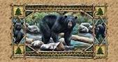 Bear Country Panel