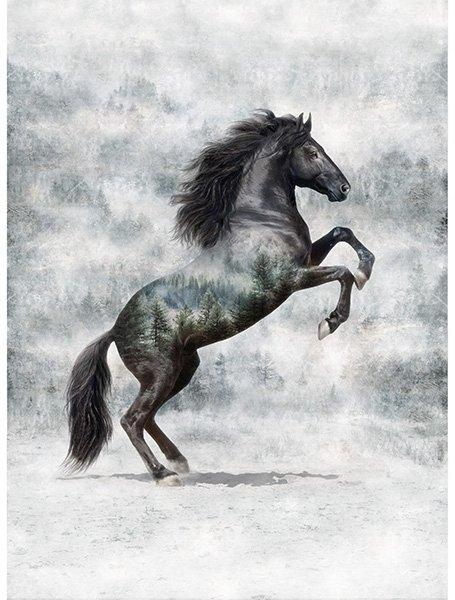 Hoffman T4861-669 Noir Call of the Wild Stallion
