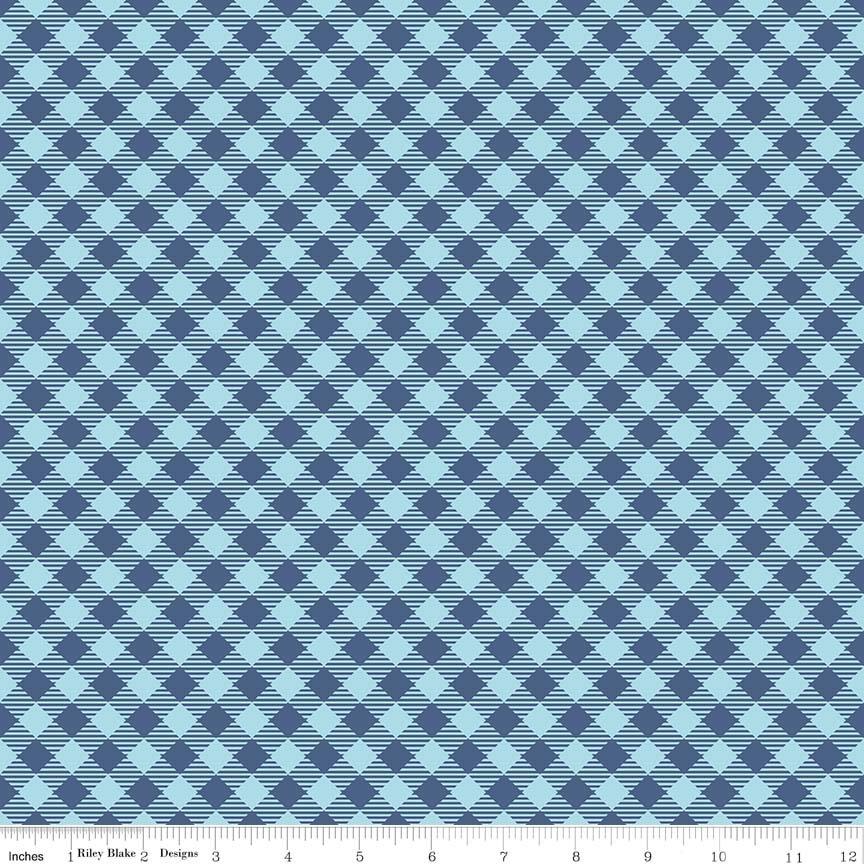 C6400 Gingham Blue