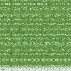 Seeds Grass