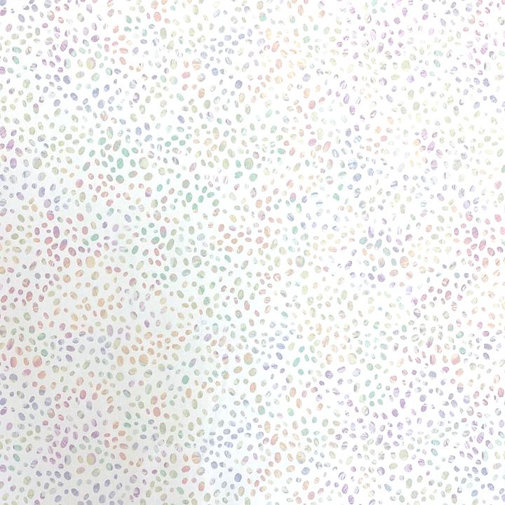 2020 Shop Hop  -  Rainbow Pebbles