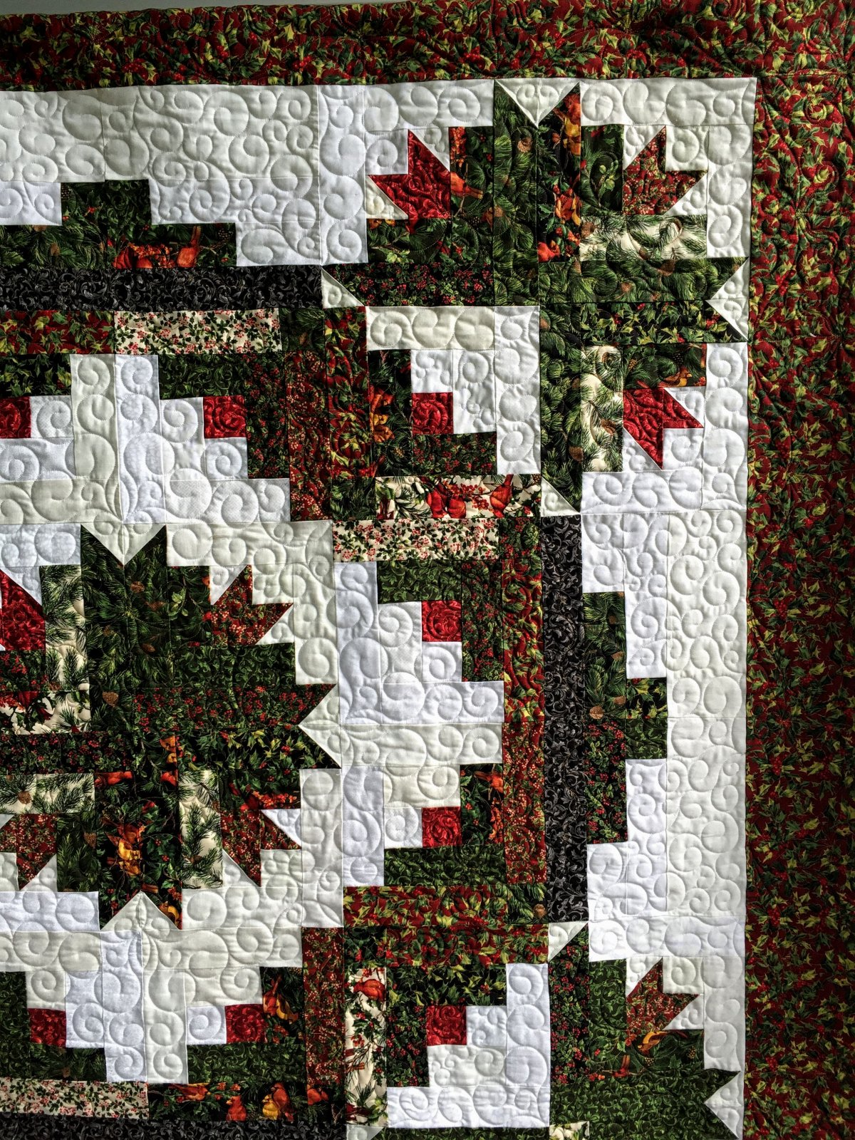 Christmas Cactus Closeup