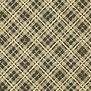 Chicopee - Simple Plaid in Black