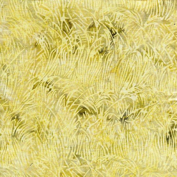 121716105 F172 Grass-Parchment