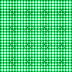1649 23691 G QT Sorbets Gingham Green
