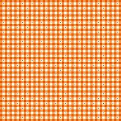 1649 23691 O QT Sorbets Gingham Orange