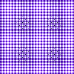 1649 23691 V QT Sorbets Gingham Purple