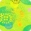 AASD-18779-50 Lime