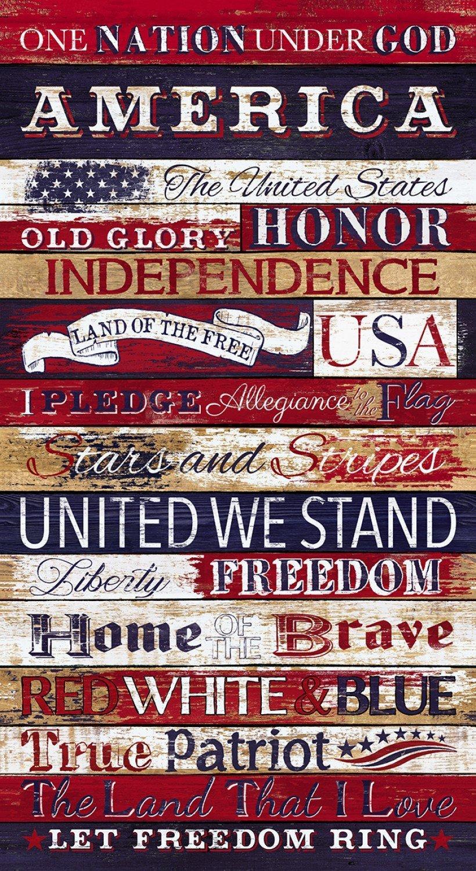 C7044 USA I Pledge Allegiance Panel