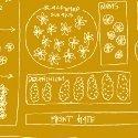 Mazy 50957-10 Pollen