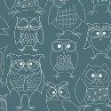 Whoos Hoo Owl Party  Teal 51595 3