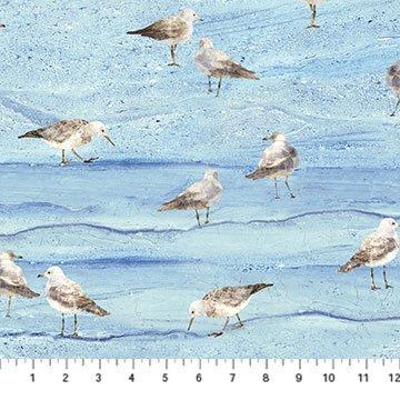 Swept Away Gull On Sand