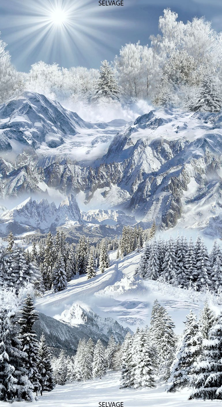 Snowscape Snow