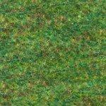 18474-47 GRASS